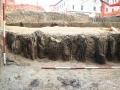 Stupovi palisade i zapuna opkopa uz vanjski rub padine zemljanoga nasipa